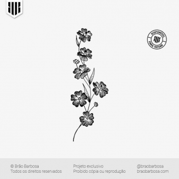 2019-10-14 - Florais - 01